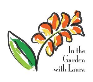 Laura Lgo Option 2